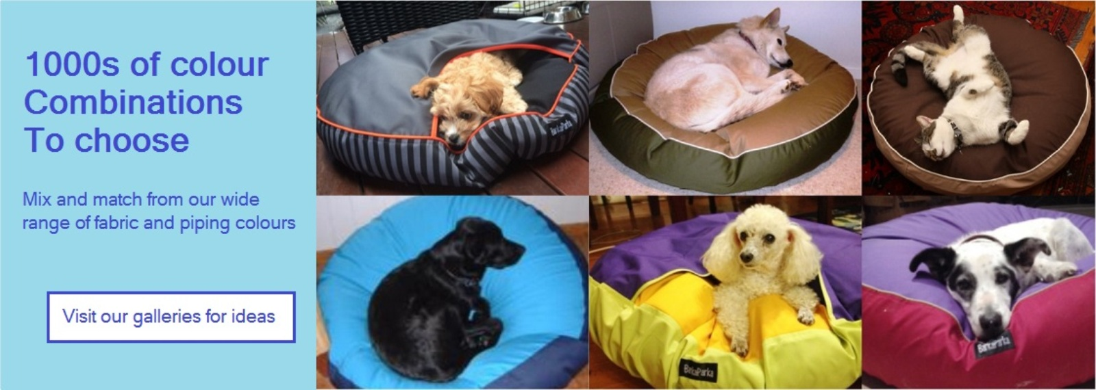 dog-bed-colour-combinations