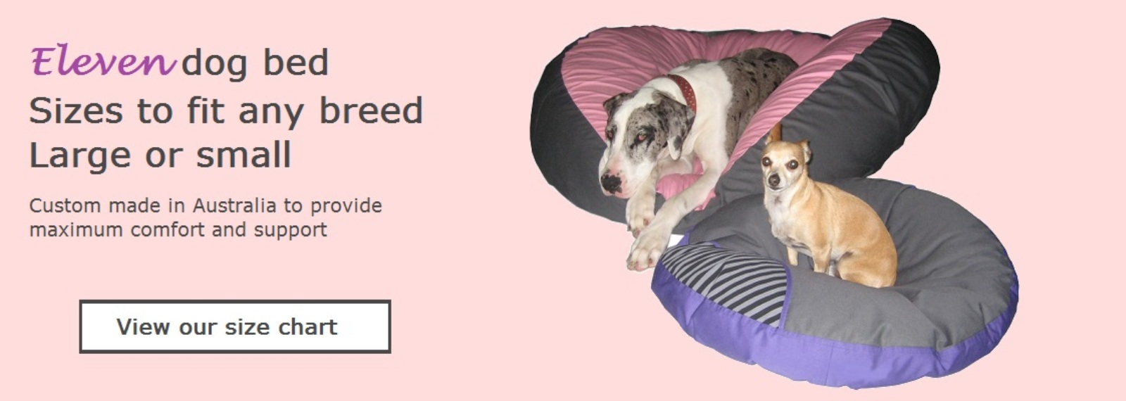 11-pet-bed-sizes