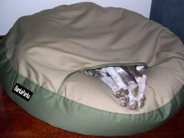 Snug dog bed with whippet